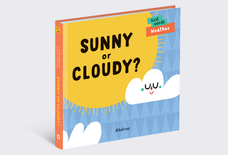 Sunny_or_Cloudy_US_01